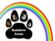 Rainbow Assay